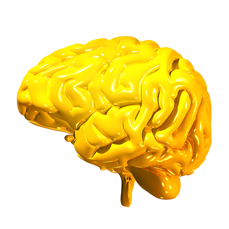 3d render of a golden human brain isolated on white background Stock Photo