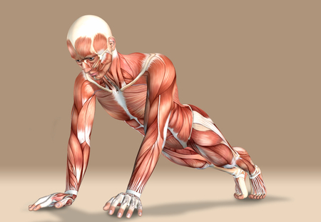 3d illustration of a medical male figure exercising Stock Photo