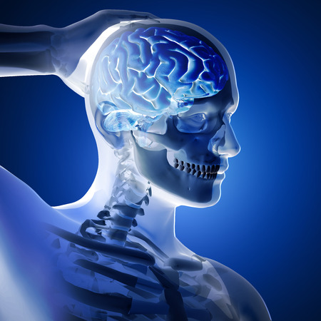 3D render of a medical figure with brain highlighted on blue background