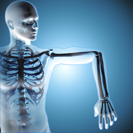 3d medical figure showing his arm joints