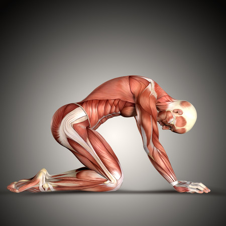 3D render of a  male medical figure in kneeling position Stock Photo