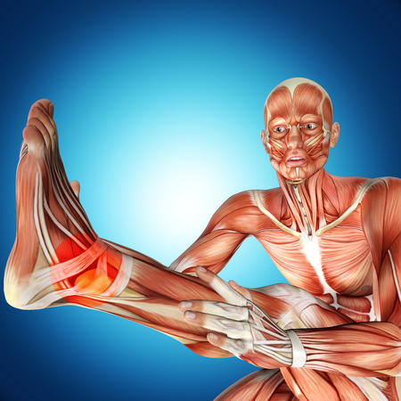 3d illustration of  a male anatomy . Ankle injury Stock Photo