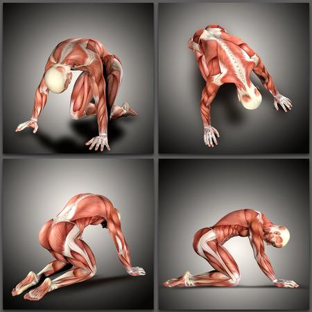 3D render of a  male medical figure in kneeling positions