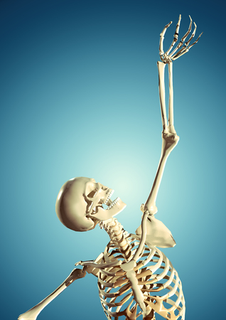3d human skeleton reaching through hands