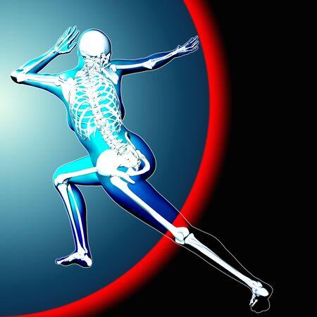 3d medical image with skeleton