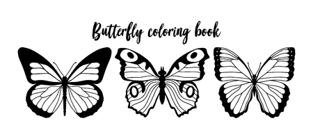 Vector illustration of black and white butterfly contour. Coloring book template