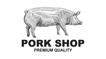Butcher Pork Shop Design Element in Vintage Style for Logotype, Label, Badge design. Pig retro vector illustration. Banque d'images - 124893335