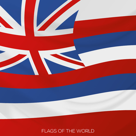 vector illustration of a close up view on the flag of hawaii Vector