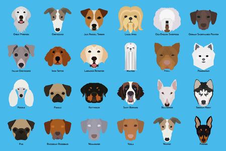 Set of different dog breeds on a blue background