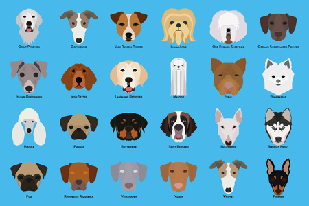 Set van verschillende hondenrassen op een blauwe achtergrond