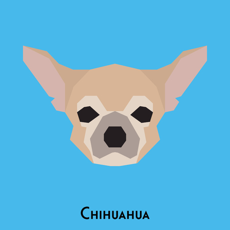 Isolated cute chihuahua on a blue background Illustration