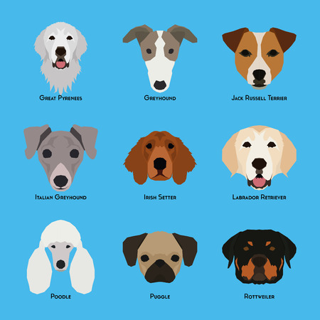 great pyrenees: Set of different dog breeds on a blue background Illustration