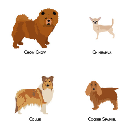 small group of animal: Set of different dog breeds on a white background Illustration