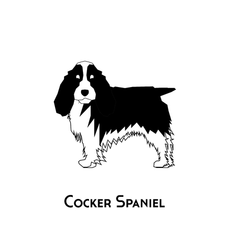 cocker: Isolated silhouette of a cocker spaniel on a white background