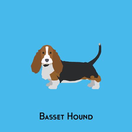 basset: Isolated basset hound dog on a blue background