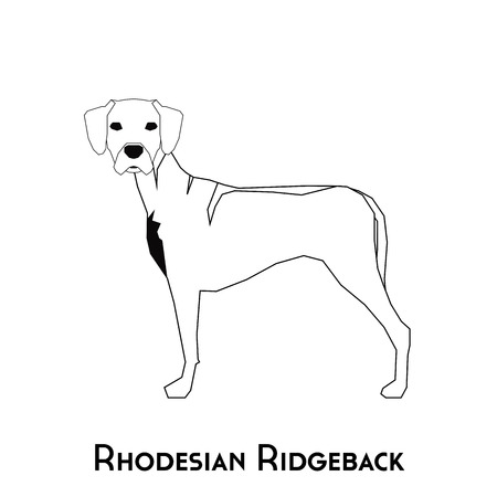 rhodesian: Isolated silhouette of a Rhodesian Ridgeback on a white background Illustration