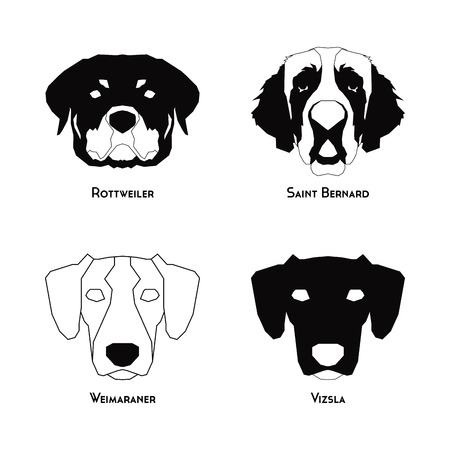 breeds: Set of silhouettes of different dog breeds on a white background