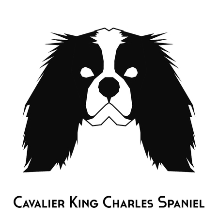 cavalier king charles spaniel: Isolated silhouette of a Cavalier King Charles Spaniel on a white background