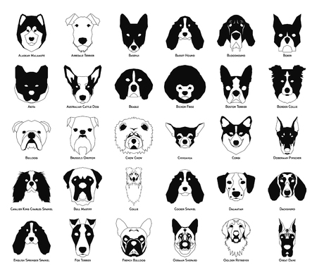 Set of silhouettes of different dog breeds on a white background Векторная Иллюстрация