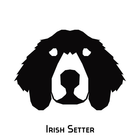 setter: Isolated silhouette of an Irish Setter on a white background