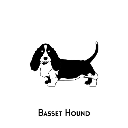 hound dog: Isolated silhouette of a basset hound dog on a white background Illustration