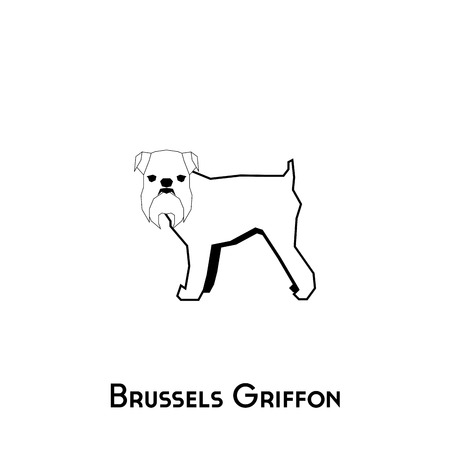 Isolated silhouette of a Brussels Griffon on a white background