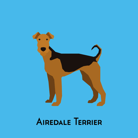 airedale: Isolated Airedale Terrier on a blue background Illustration