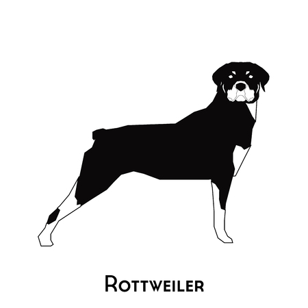 Isolated silhouette of a cute Rottweiler on a white background