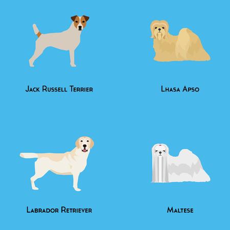 breeds: Set of different dog breeds on a blue background Illustration