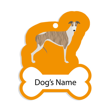dog tag: Isolated golden dog tag with text and an illustration of a dog breed