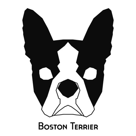 boston terrier: Isolated silhouette of a boston terrier on a white background Illustration