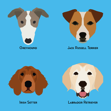 the irish image collection: Set of different dog breeds on a blue background Illustration