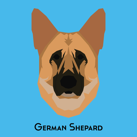 shepard: Isolated German Shepard on a blue background