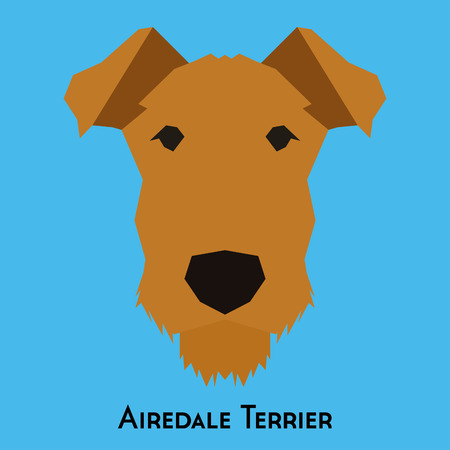 airedale terrier: Isolated Airedale Terrier on a blue background Illustration