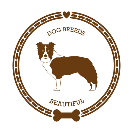 collie: Isolated sticker with a silhouette of a border collie on a white background Illustration