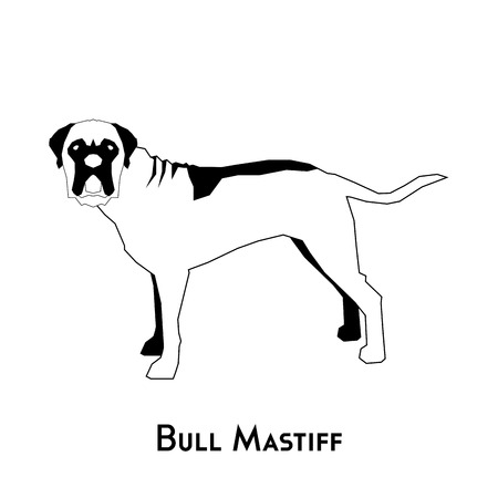 bull mastiff: Isolated silhouette of a bull mastiff on a white background