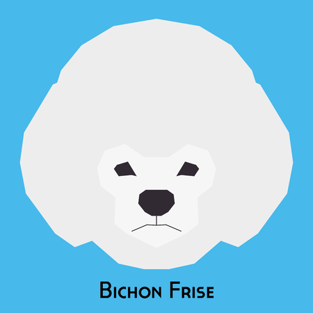 frise: Isolated bichon frise dog on a blue background Illustration