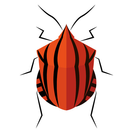 Isolated beetle on a white background, vector illustration