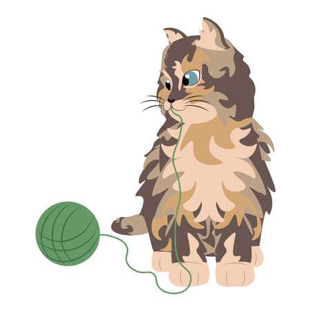 Isolated cat pixie bob breed animals icon- Vector