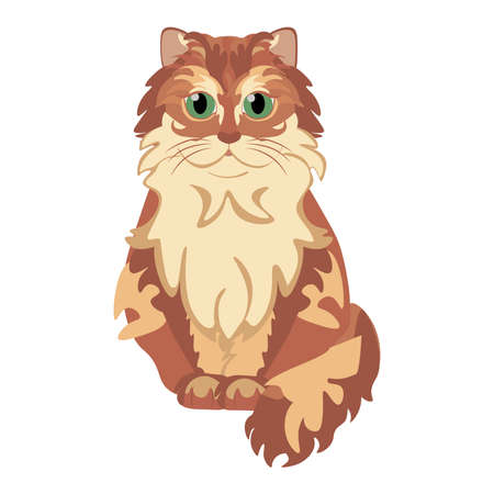 Isolated cat american bob tail breed animals icon - Vector