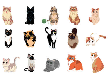 Isolated set group cats breed animals icon- Vector