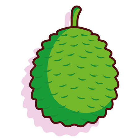 Isolated health exotic fruit tropical diet icon- Vector