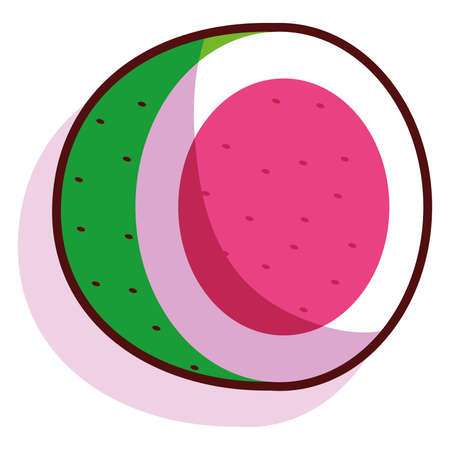 Isolated watermelon fruit tropical diet icon- Vector