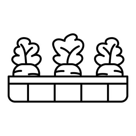Carrots icons in a pot - Vector illustration design