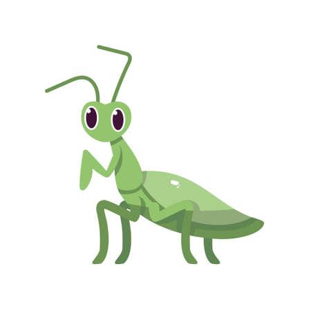 Isolated cartoon of a cricket - Vector illustration