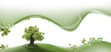 Natuur kop-en voettekst met beuken boom