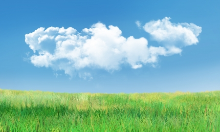 Background with Cumulus Clouds and Green Grass Landscape