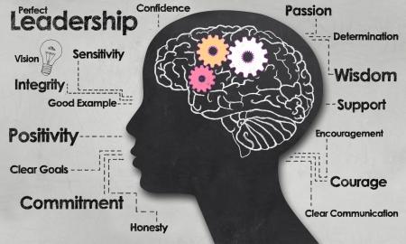 리더십의 긍정적 인 단어와 여성의 두뇌와 개요 스톡 콘텐츠