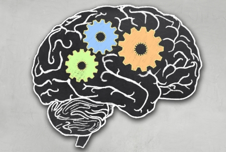 Working Brain with Clipping Path in Blackboard Style Stock Photo
