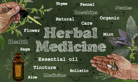 Herbal Medicine illustration with Hands, Herbs, and Pipette on Green Blackboard Standard-Bild - 105299529